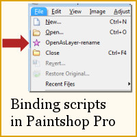 BindingScriptsInPSP