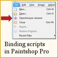 BindingScriptsInPSP
