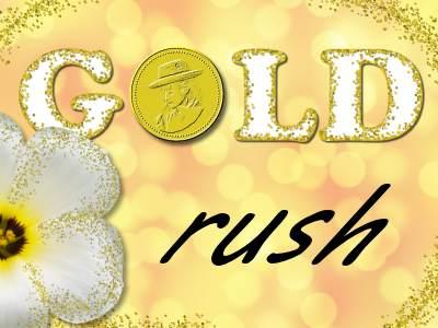 GoldRush2-400