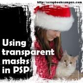 Using transparent masks in Paintshop Pro