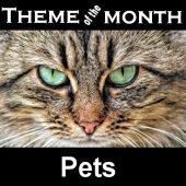 Theme – Pets