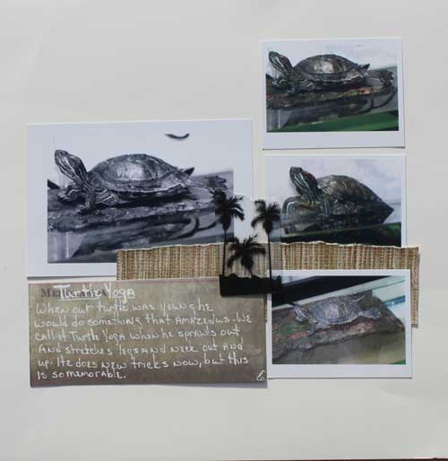 Layout by Gina Zee