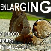 Enlarging photos with PhotoZoom