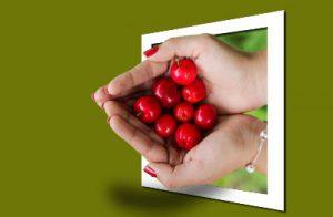 cherries--400