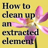How to clean up an extracted element