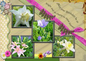 4-flower-portraits-thelma-bday
