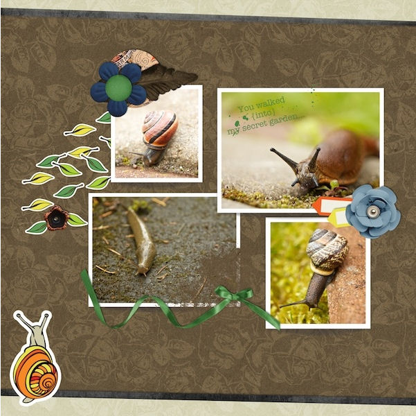 Layout by Ania Archer