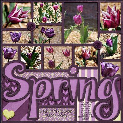 Spring-Shellby