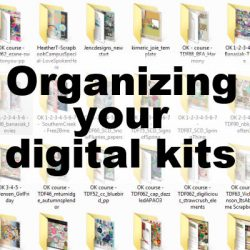Organizing your digital kits