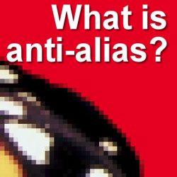 What is anti-alias?