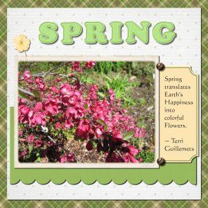 word-challenge_spring1000