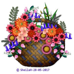 fflower-basket-2-sgh-28-05-2017