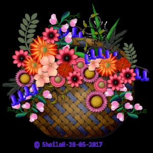 fflower-basket-2-sgh-28-05-2017