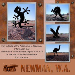 newman-wa