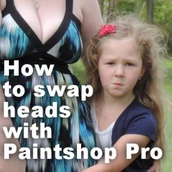 How to swap heads with Paintshop Pro