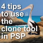 4 Tips to use the Clone Tool in Paintshop Pro