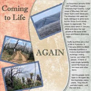 coming-to-life-again