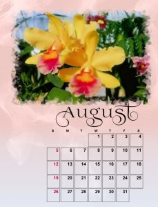 august-small-2