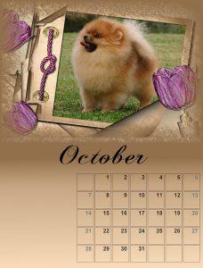 calendar-010-small