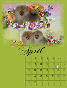 calendar-04-small
