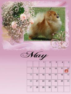 calendar-05-small