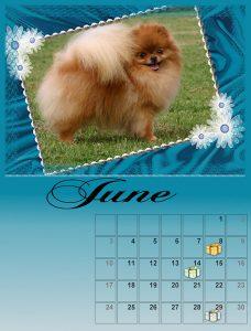 calendar-06-small