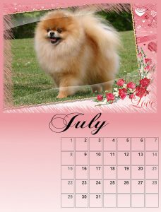 calendar-07-small