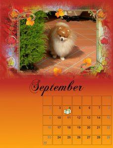 calendar-09-small