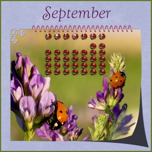 calendar-sept-2017