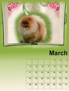 calendar-march-resized-for-upload