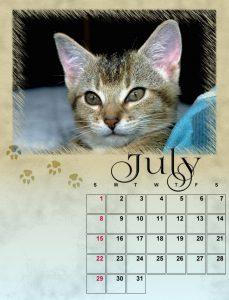july-small-2
