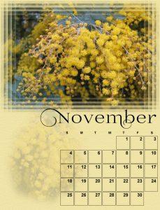 november-small