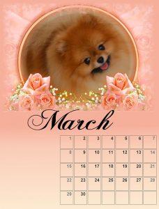 calendar-03-small