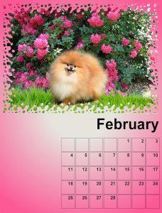 calendar-february-resized-for-upload