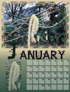 calendar-01-januarbig