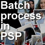 How to use the Batch Process in PSP