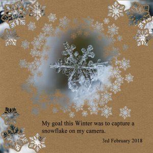 snowflake-achieved-my-goal