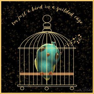 cass-bird-cage-3