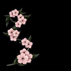 sgh-pink-floral-spray-29-05-2018