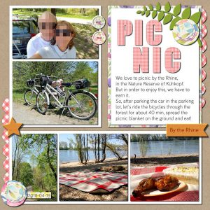 theme-201805may-picnic-600forum