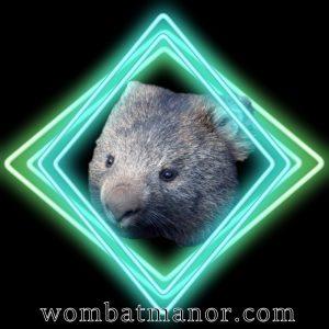 wombatbluegrnneonframe1