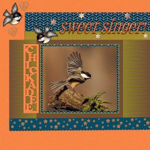 chickadee-sweet-singer