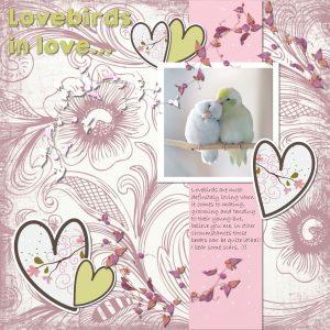 lovebirds-in-love_downsize
