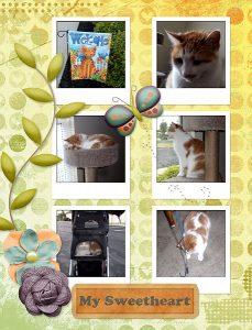 collage-scrapbook-scrapbook8-5x11in-04-sm
