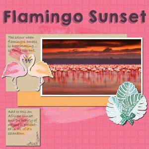 flamingo-sunset-resized