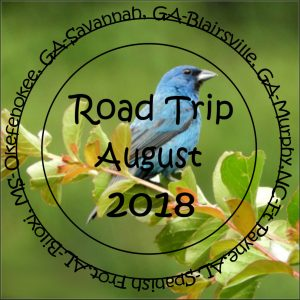travel-challenge-day-3-2