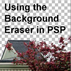 Using the Background Eraser in PaintShop Pro