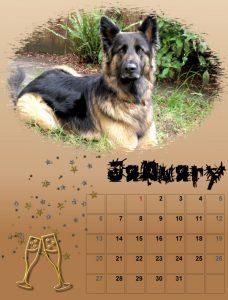 2019-dog-calendar-01_share-2
