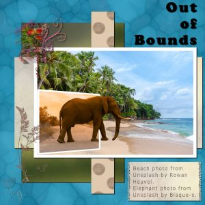out-of-bounds-elephant
