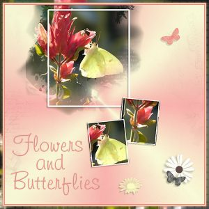 day-1-flowers-and-butterflies